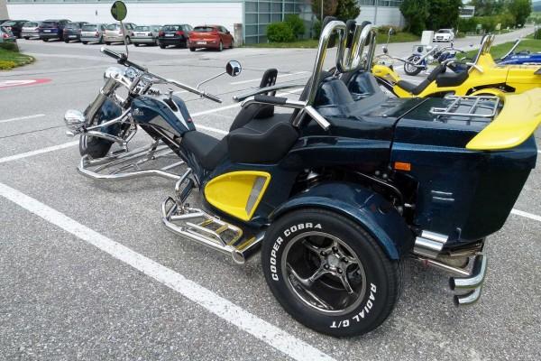 Mustang Family Neufahrzeug 1,5 110 PS 29900 € (8)